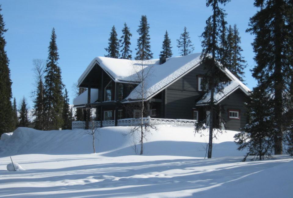 Luxury Log Cabin in Lapland